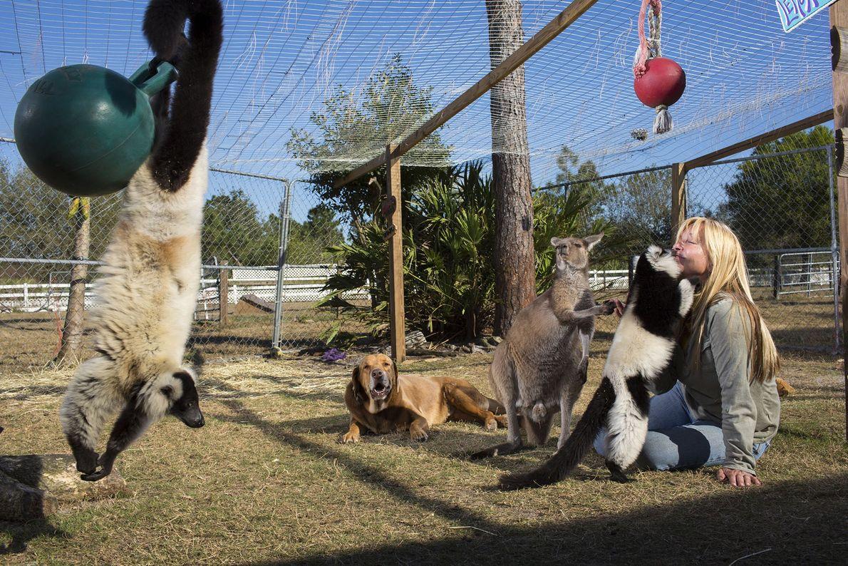 """""""A minha vida gira completamente em torno dos animais"""", diz Leslie-Ann Rush, treinadora de cavalos na ..."""