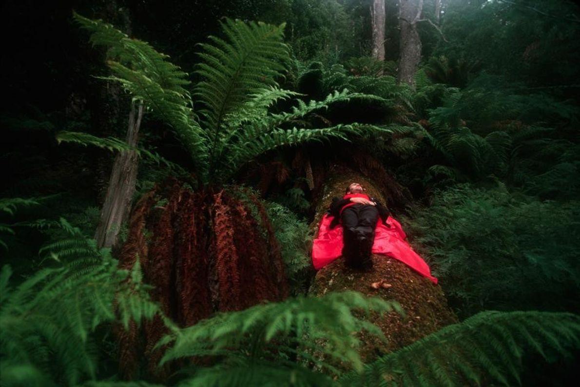 Intervalo no Bosque
