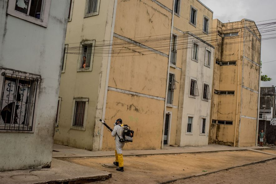 Um funcionário da saúde fumiga um bairro do Recife