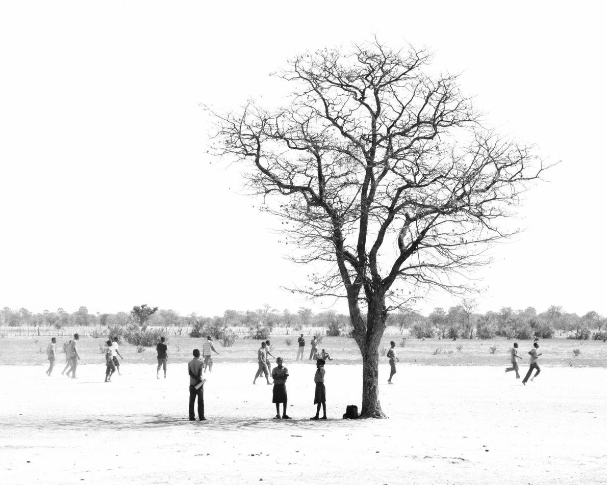 Crianças paradas junto a uma árvore