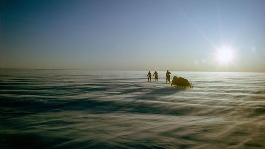 Imagens de Myrtle Simpson: Pioneira no Esqui