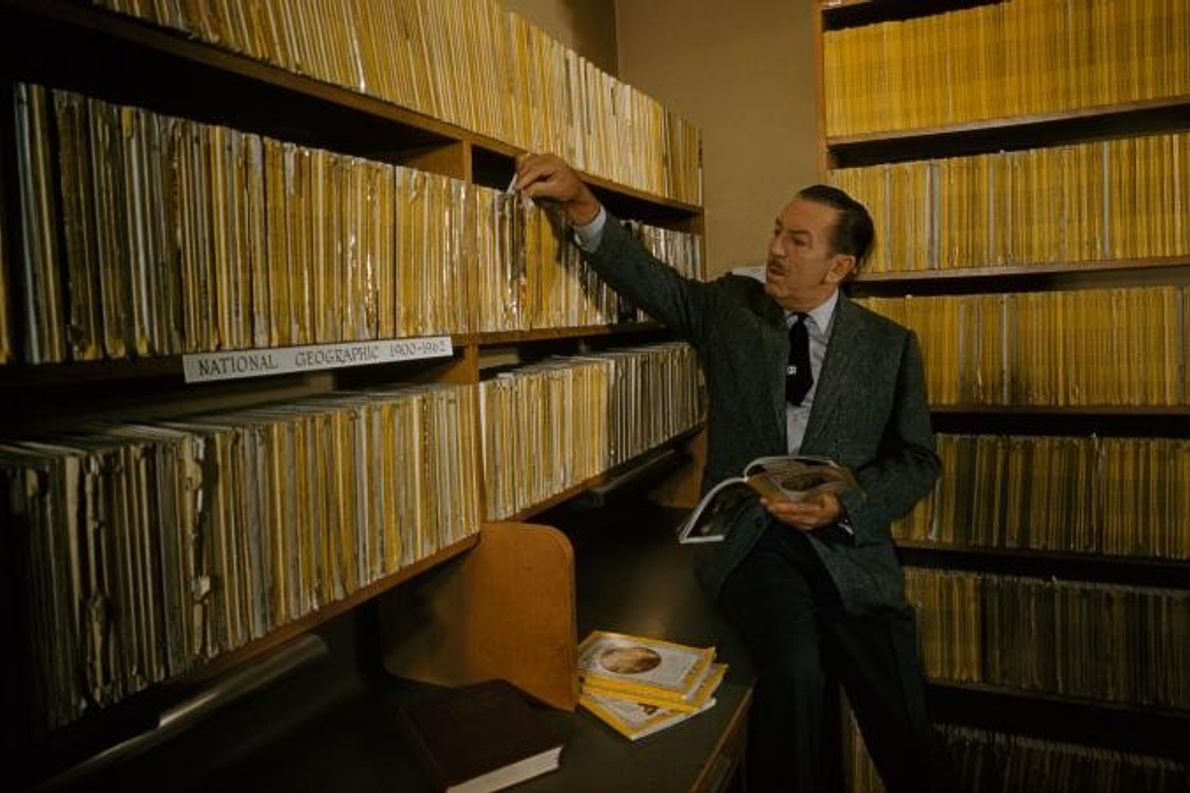 Walt Disney pesquisa uma ideia em Burbank, na Califórnia.