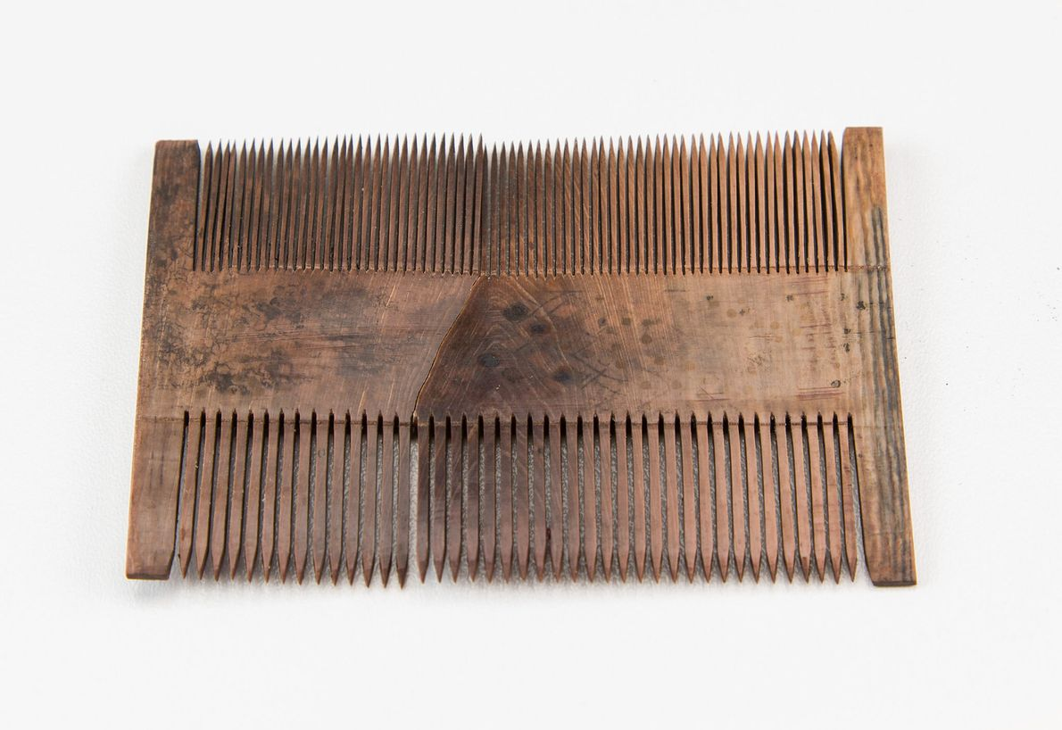 Fotografia de um pente de madeira preservado num naufrágio no Mar do Norte.