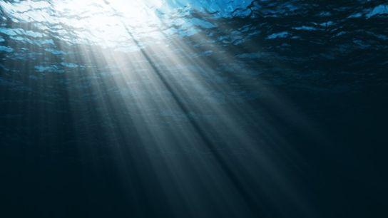 Fundo do oceano.