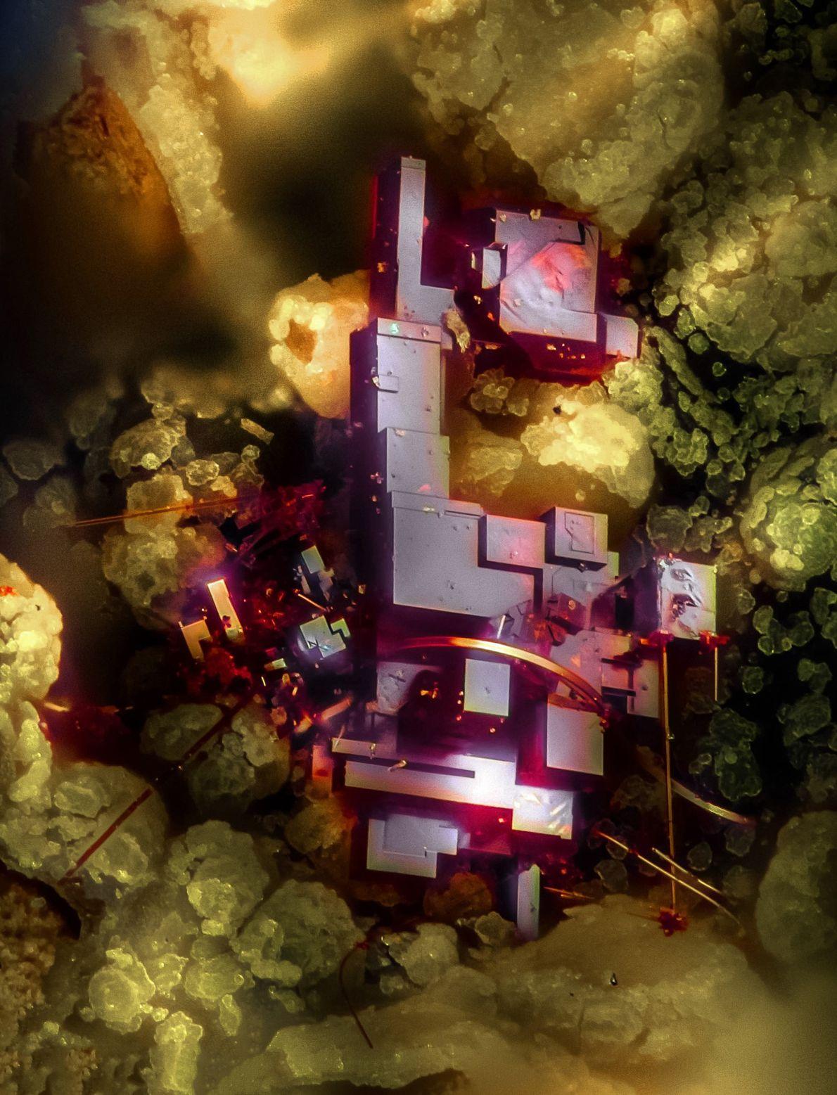 Emilio Carabajal Márquez fotografou este atraente cristal vermelho – cuprite, um mineral feito de óxido de ...