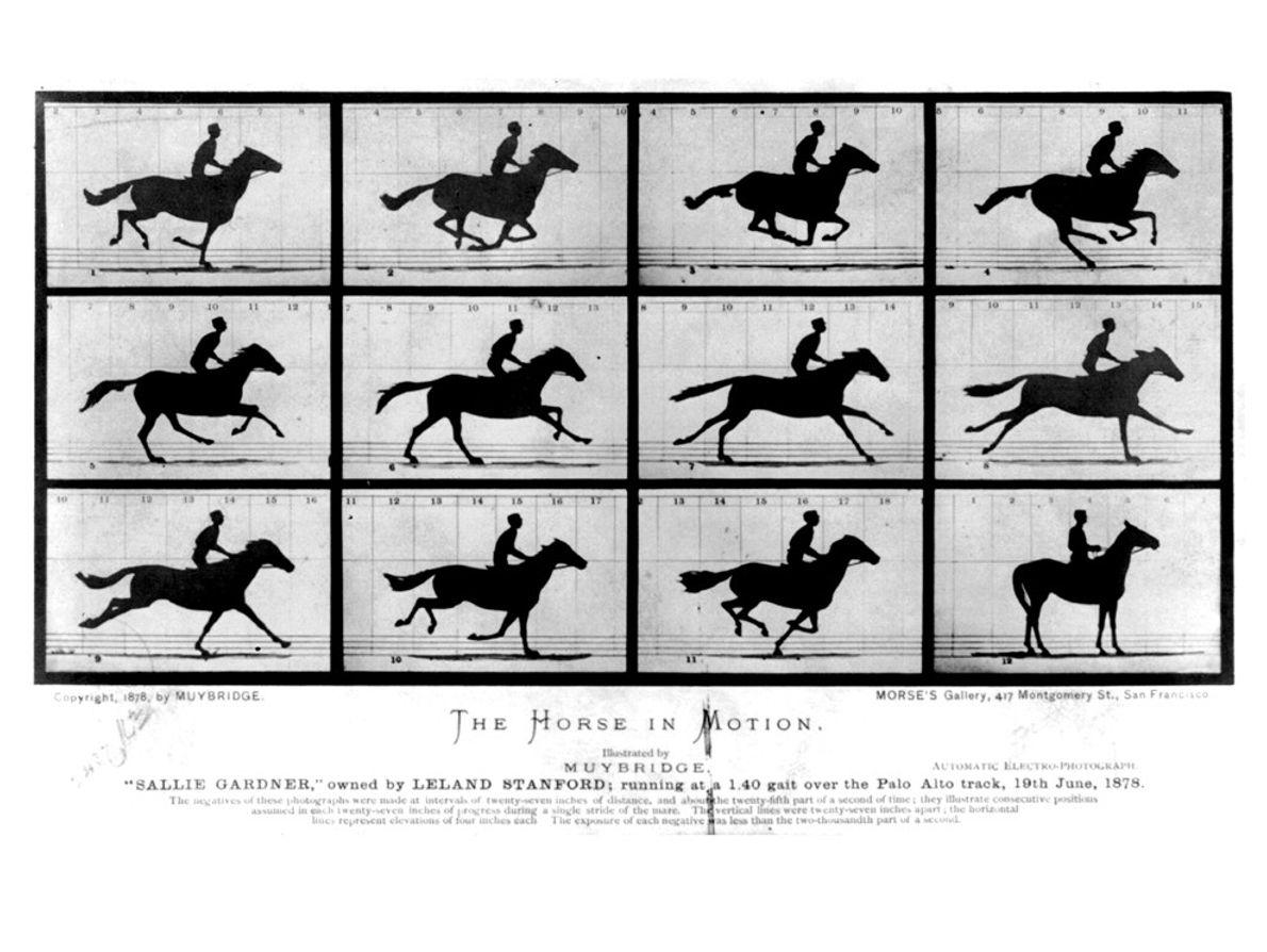 Primeiras Fotografias a Capturar Movimento