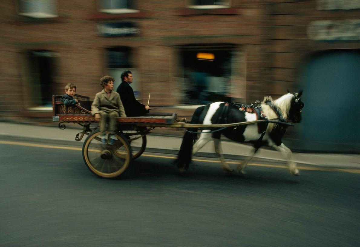 Feira de Cavalos Appleby