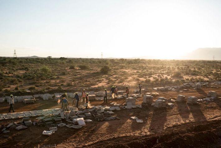 Trabalhadores na construção trabalham numa secção da linha férrea no Parque Nacional de Tsavo.