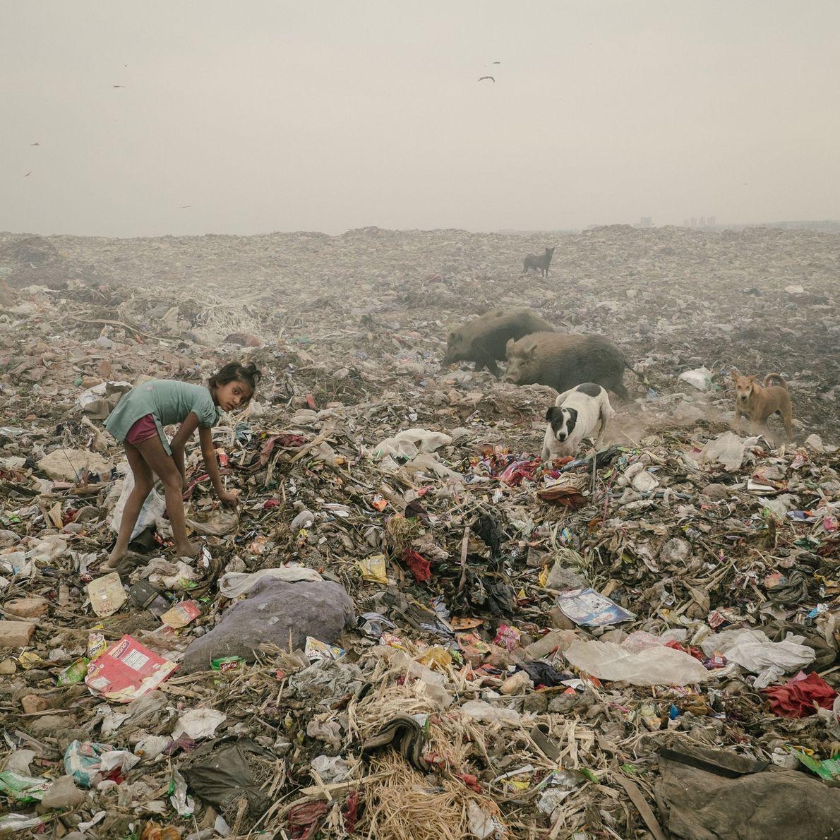 Fotografia de um aterro em Bhalswa.