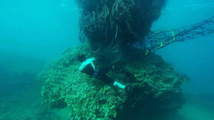 A monstruosa rede de 11 toneladas que ameaçou a costa do Havai