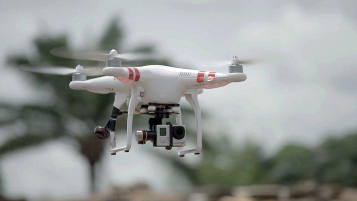 Drone Espiador Ajuda a Descobrir Comércio de Marfim