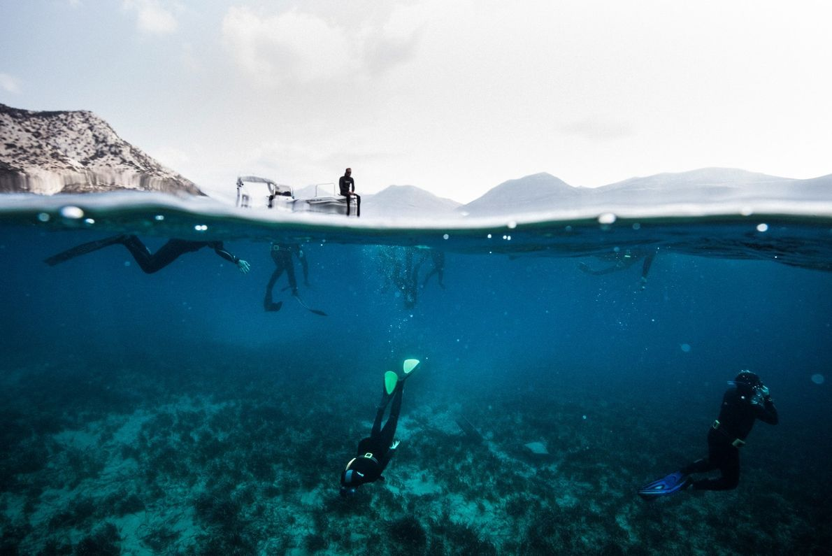 Sessão de mergulho livre conduzida por Dimitris Synodinos e Amorgos Diving Center na Grécia em 2018. ...