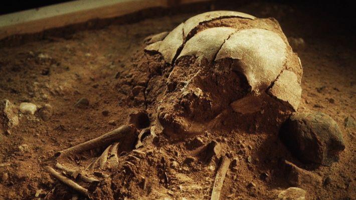Encontrado esqueleto de bebé com 8400 anos na Alemanha