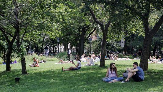 Experiencie a Tranquilidade do Central Parque