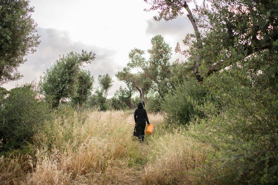 Uma mulher caminha para fora do Olival, possivelmente para recolher lenha ou deitar fora o lixo. ...