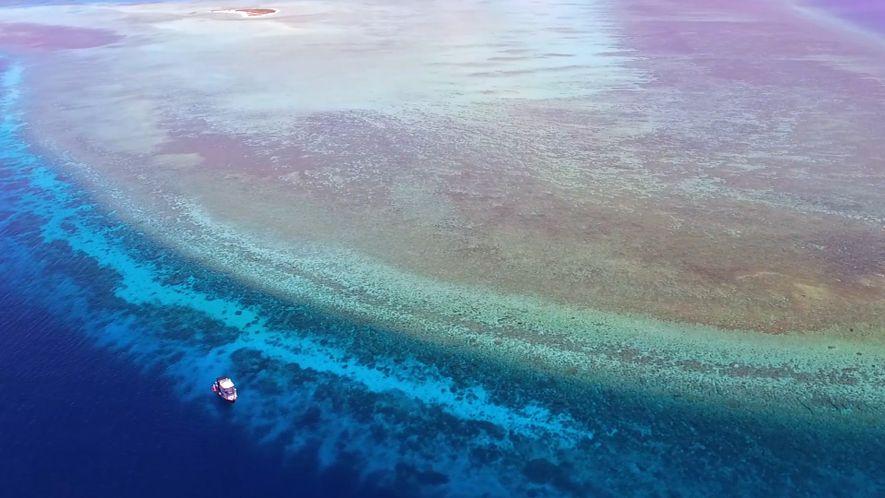 Explore Um Dos Recifes de Coral Mais Preservados do Mundo