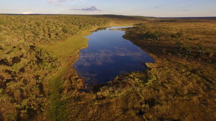 Rios Africanos Por Explorar Revelam Mundo Escondido