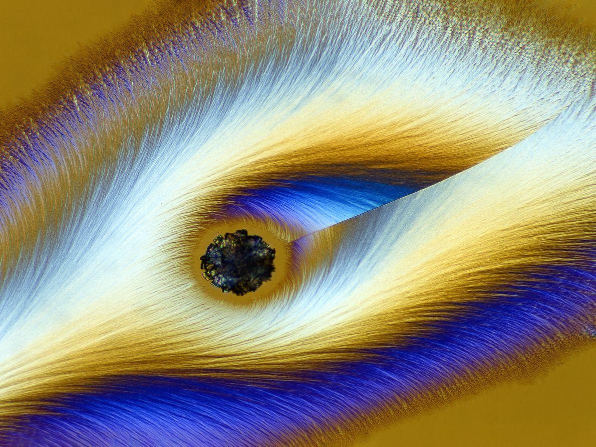 A imagem do fotógrafo alemão Karl Deckart, captada com um microscópio de luz polarizada, faz com ...