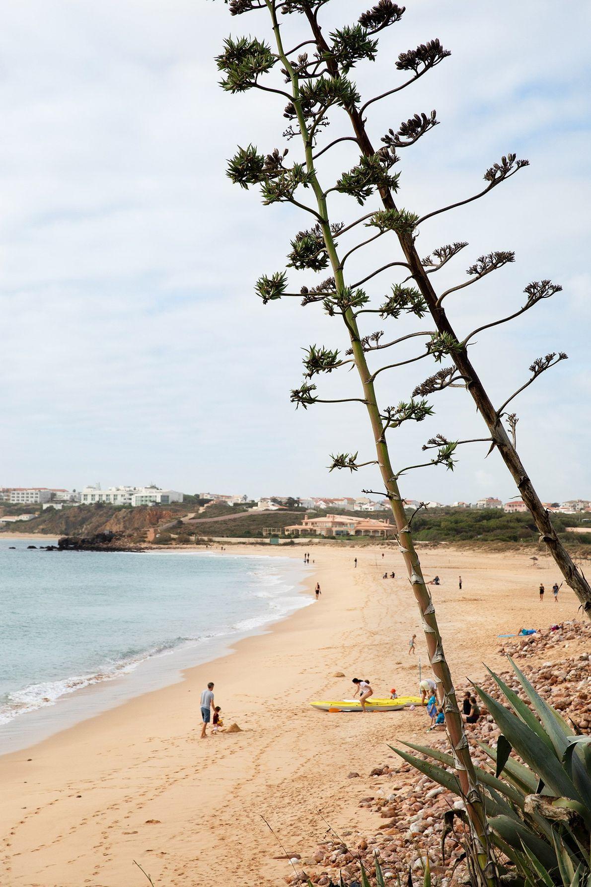 Em Portugal, todas as praias são públicas. A praia do Martinhal, ao lado do Martinhal Sagres ...