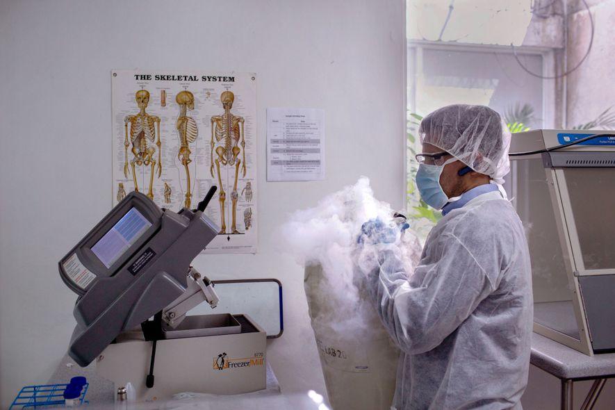 Para extrair ADN do osso, um cientista derrama nitrogénio líquido numa máquina para congelar o fragmento, ...