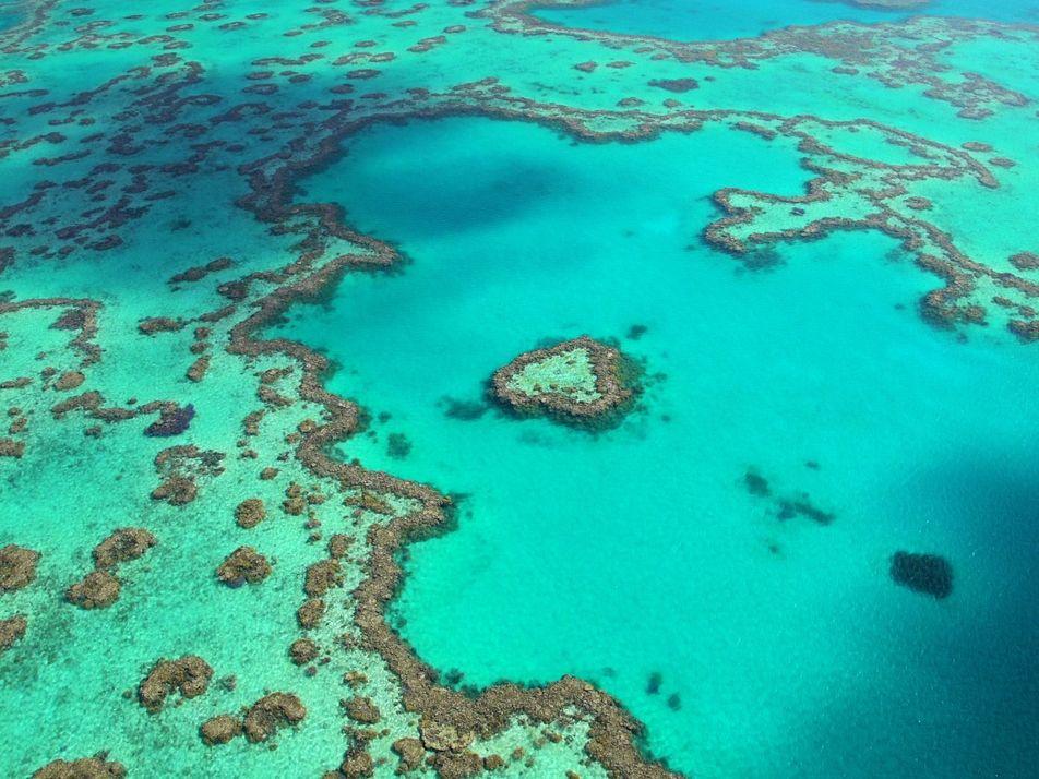 Explore o Esplendor da Grande Barreira de Coral da Austrália
