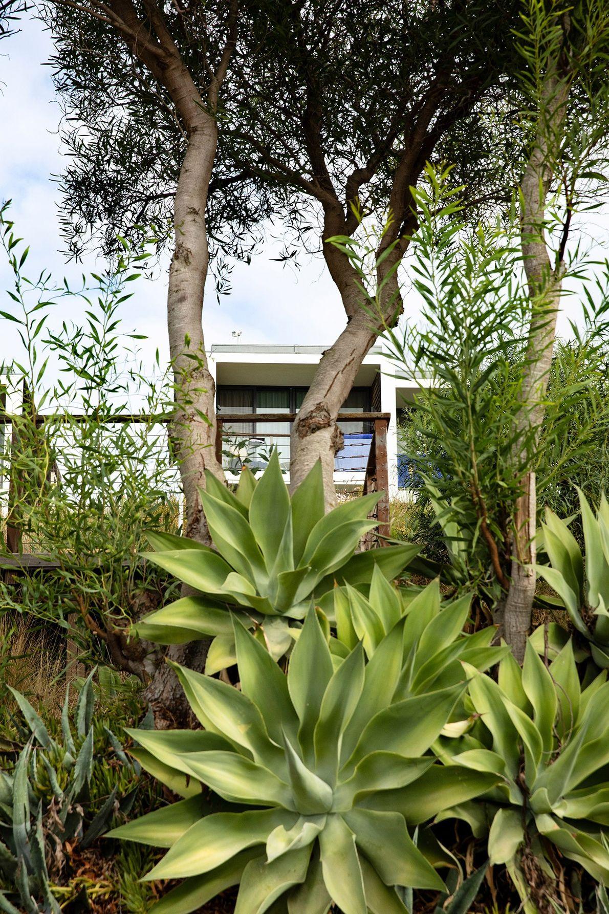 Os quartos e moradias do Martinhal Sagres Beach Family Resort satisfazem as necessidades de famílias de ...