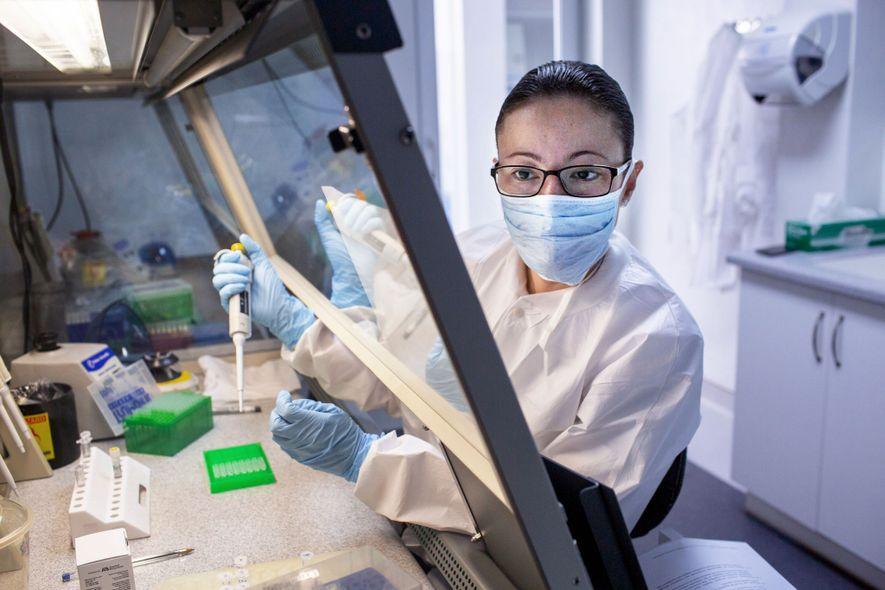 Os novos equipamentos possibilitaram aos cientistas da FAFG, como Andrea Carcamo, extrair mais marcadores genéticos de ...