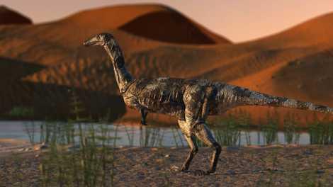Pé de Dinossauro Recentemente Descoberto é o Fóssil de Terópode Melhor Preservado no Brasil