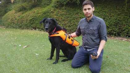 Cão Responde a Comandos Sem Voz Através de Colete Vibratório