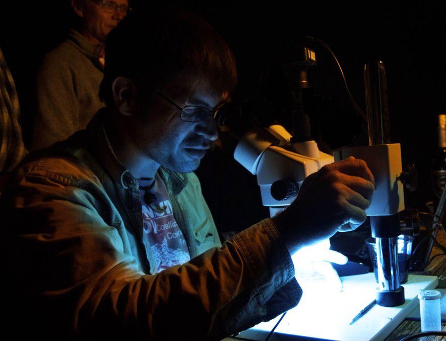 Mark Richards, coautor do estudo (esquerda, ao fundo), observa o líder da equipa, Robert DePalma, a ...