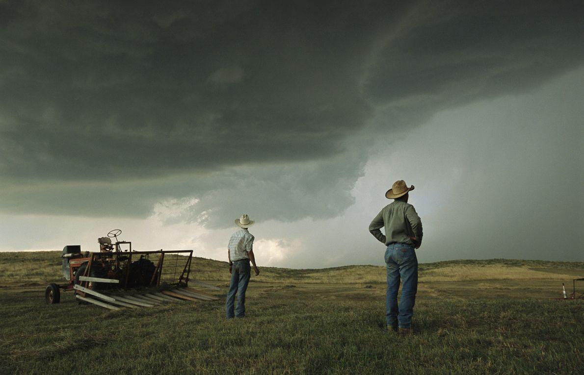 Fazendeiros avaliam a tempestade