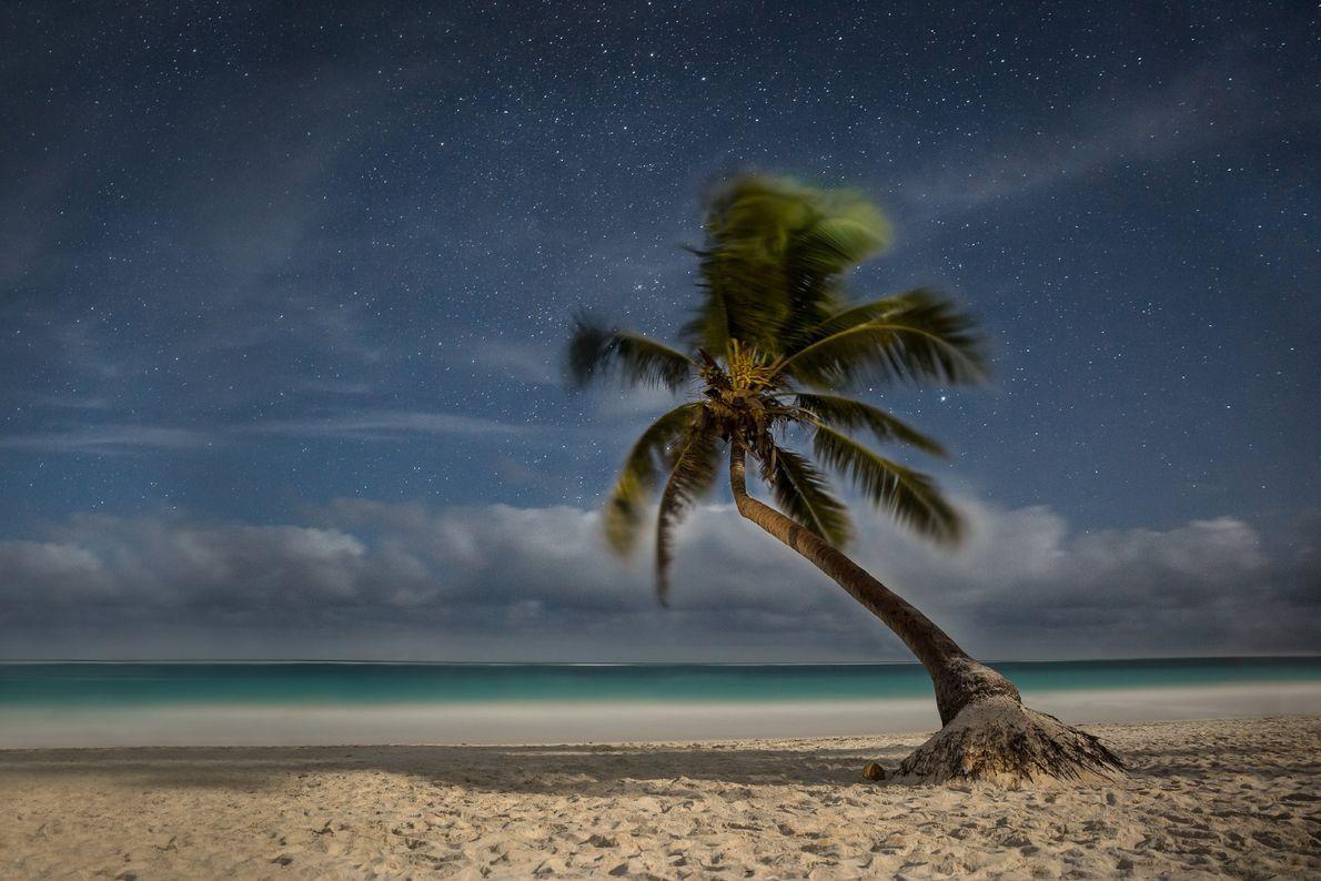 A fotógrafa Your Shot, Sina Falker, esperou por este momento tranquilo sob as estrelas, em Playa ...