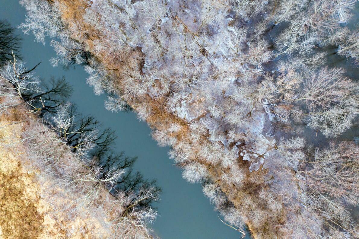 árvores com gelo ao longo do riacho Otter