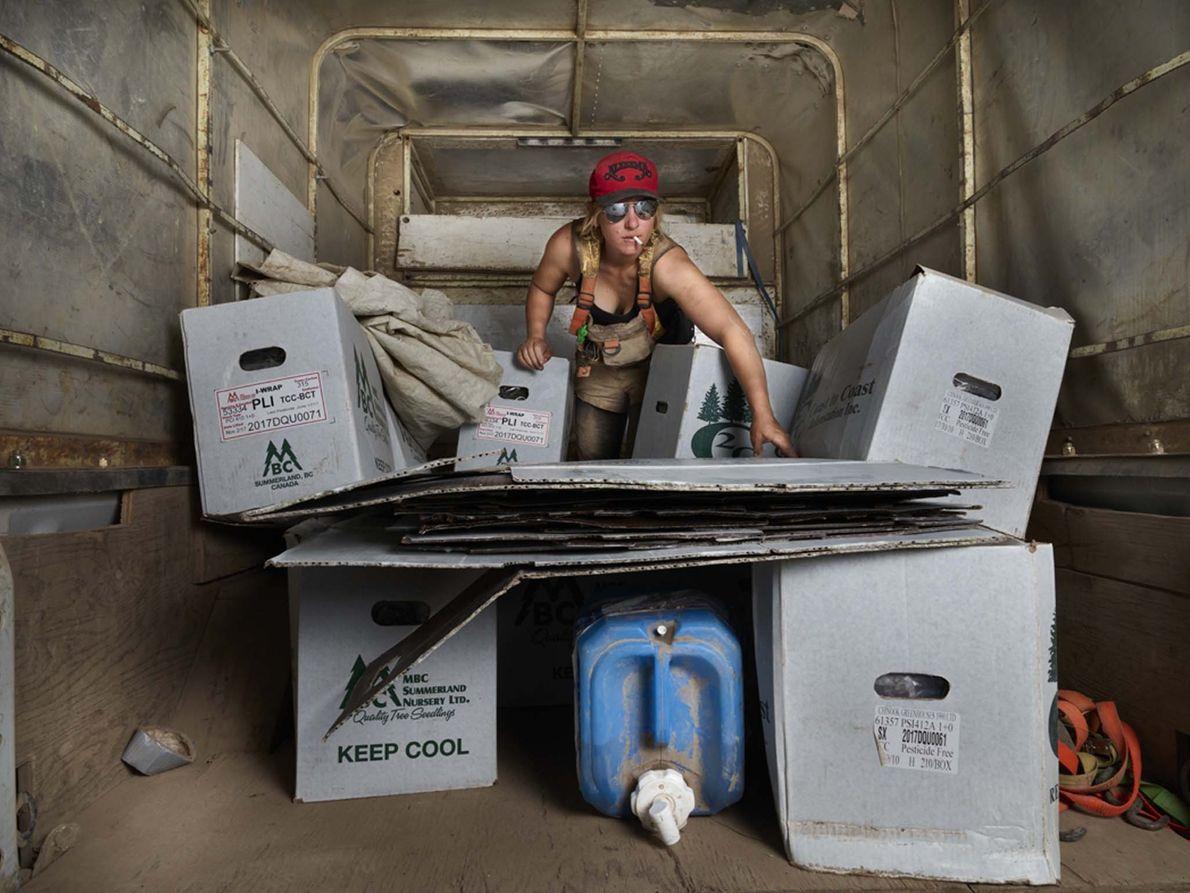 Sonia Domarchuck, uma das chefes de equipa, descarrega caixas de sementes de pinheiro e de abeto, ...