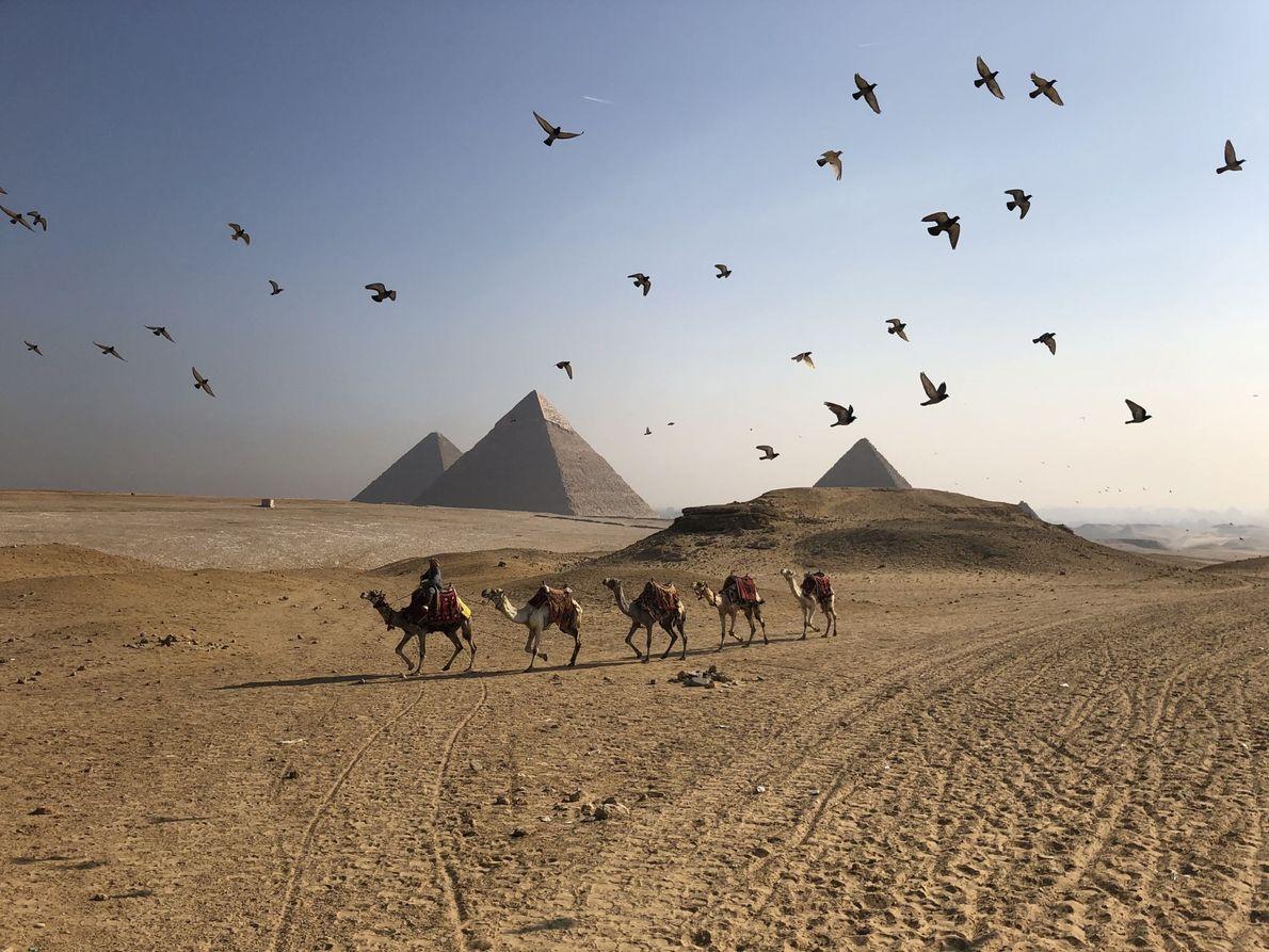 GIZÉ, EGITO