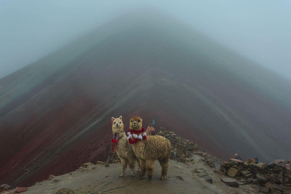 MONTANHA ARCO-ÍRIS, PERU