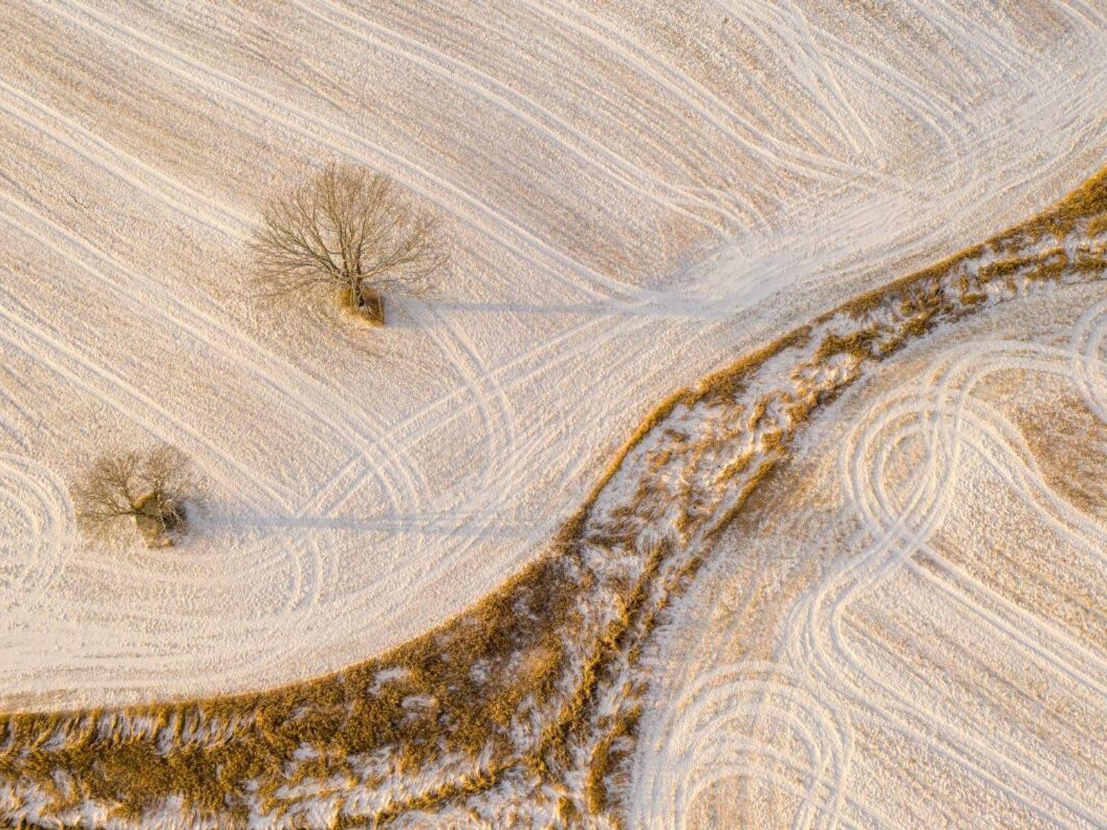 """O fotógrafo Caleb Kenna regressa repetidamente às quintas em torno de Weybridge, em Vermont. """"Há algumas ..."""