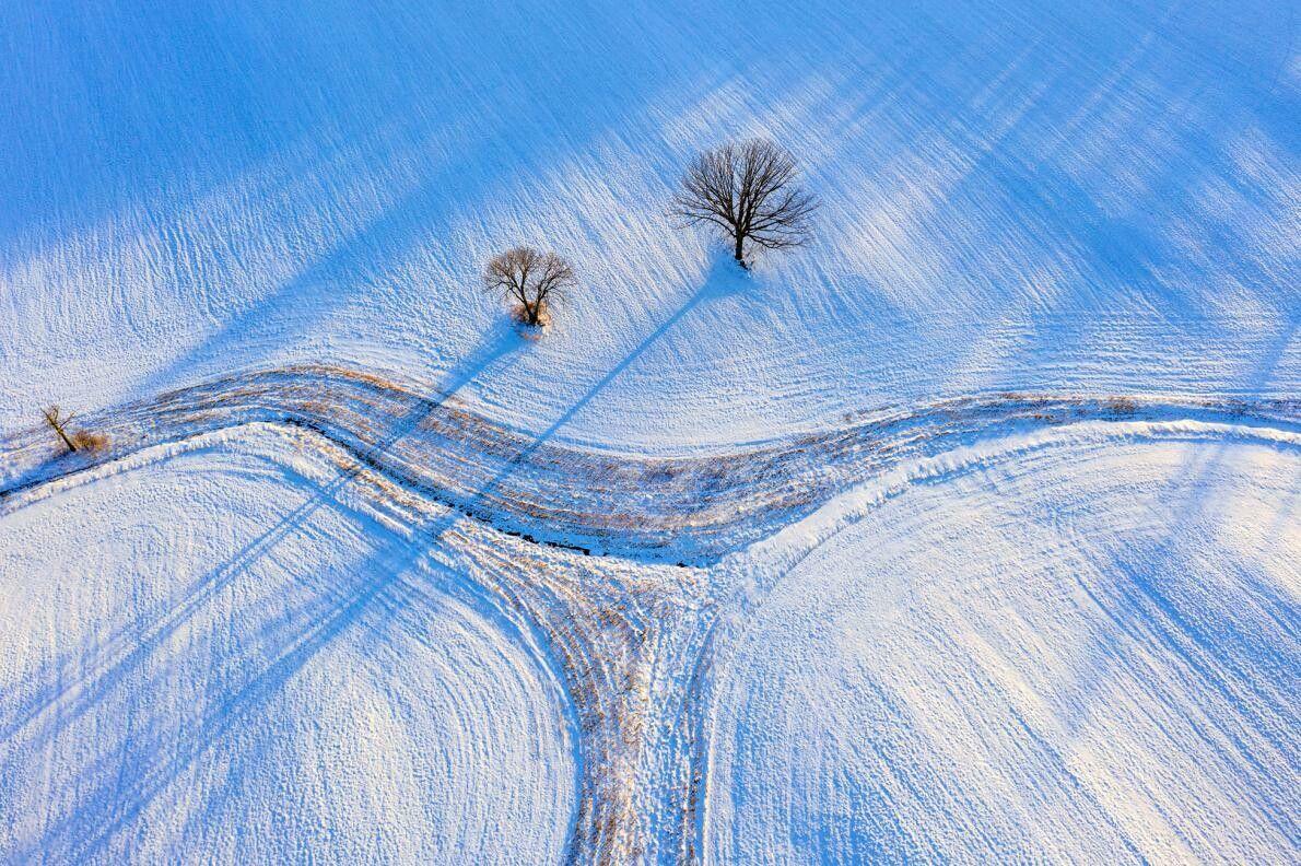 Os campos de neve e a luz de final de dia conferem um tom azul onírico ...