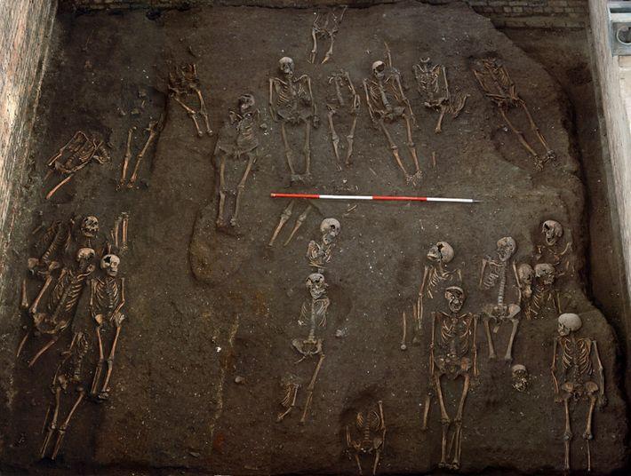 Cancro medieval: corpos