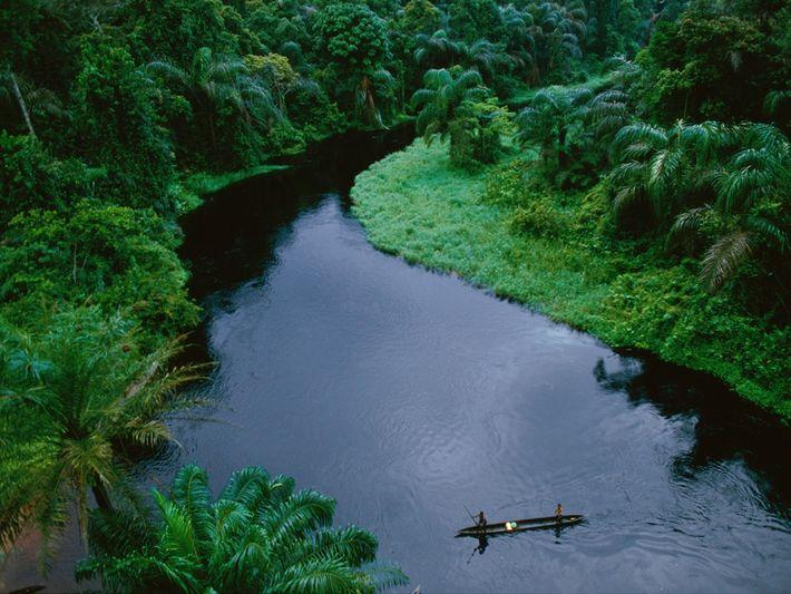 As canoas são vitais para o transporte nos rios da floresta tropical na República do Congo. ...