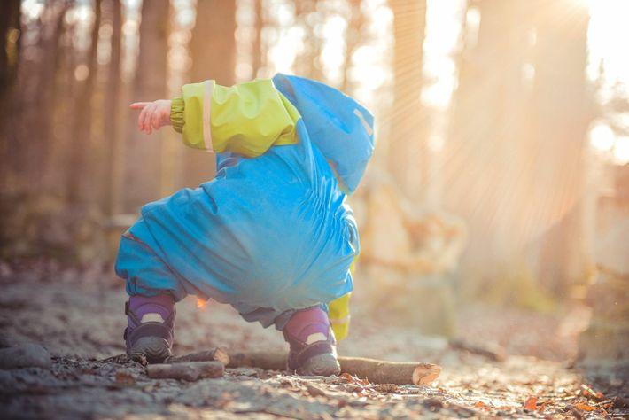Uma criança tenta apanhar um pau numa floresta