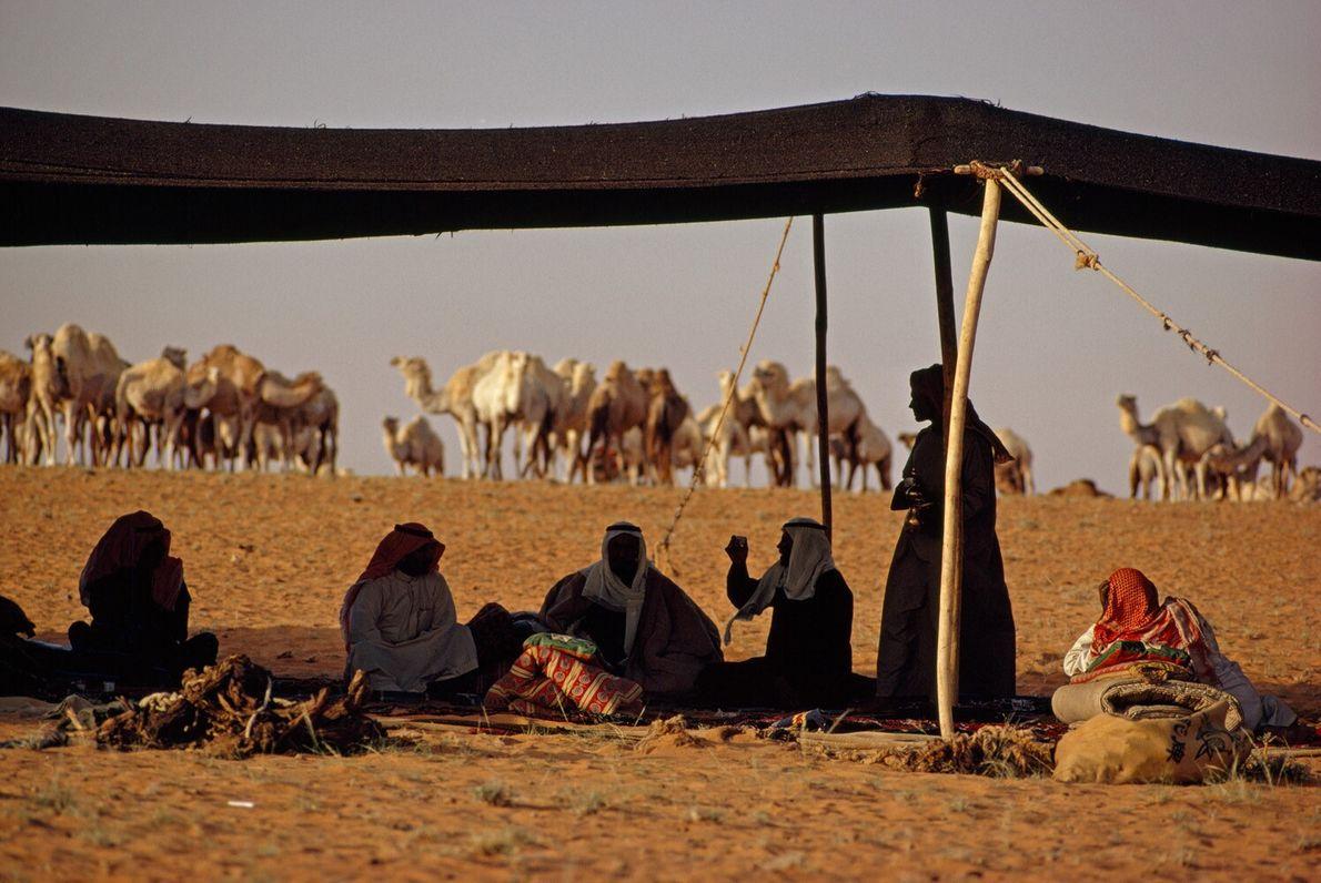 Beduínos