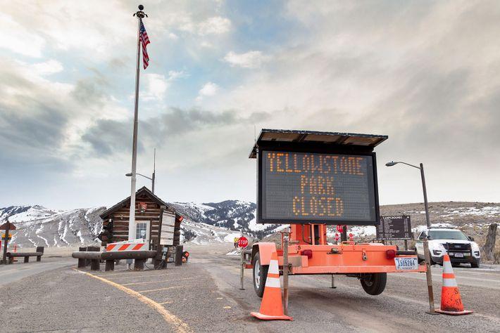 Os parques nacionais de Yellowstone e Grand Teton encerraram no dia 24 de março. A hesitação ...