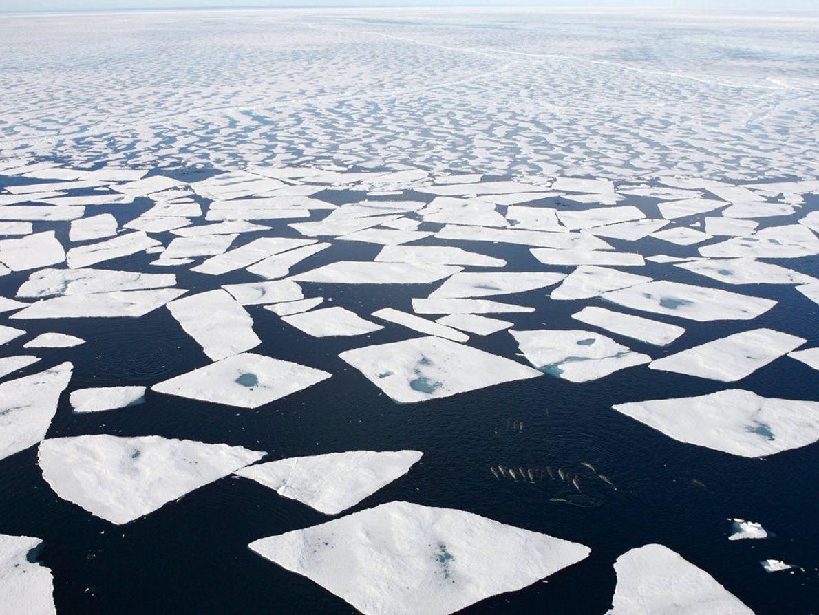 Veja fotografias da mudança climatérica do Ártico