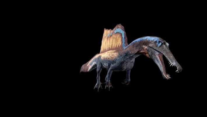 Animação 3D de Um Espinossauro