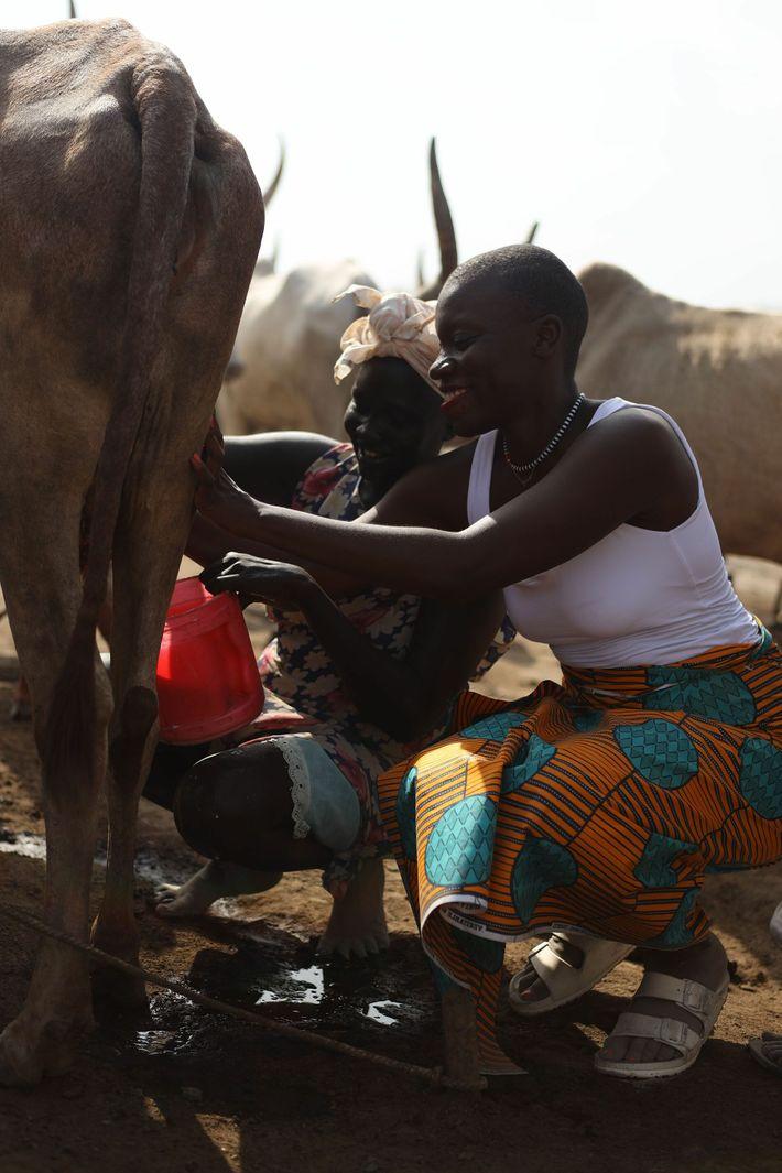 Jessica visita um acampamento de gado no Sudão do Sul