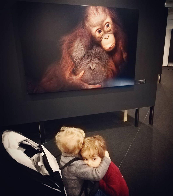 Imagem da participante @olasouamaria na exposição Photo Ark