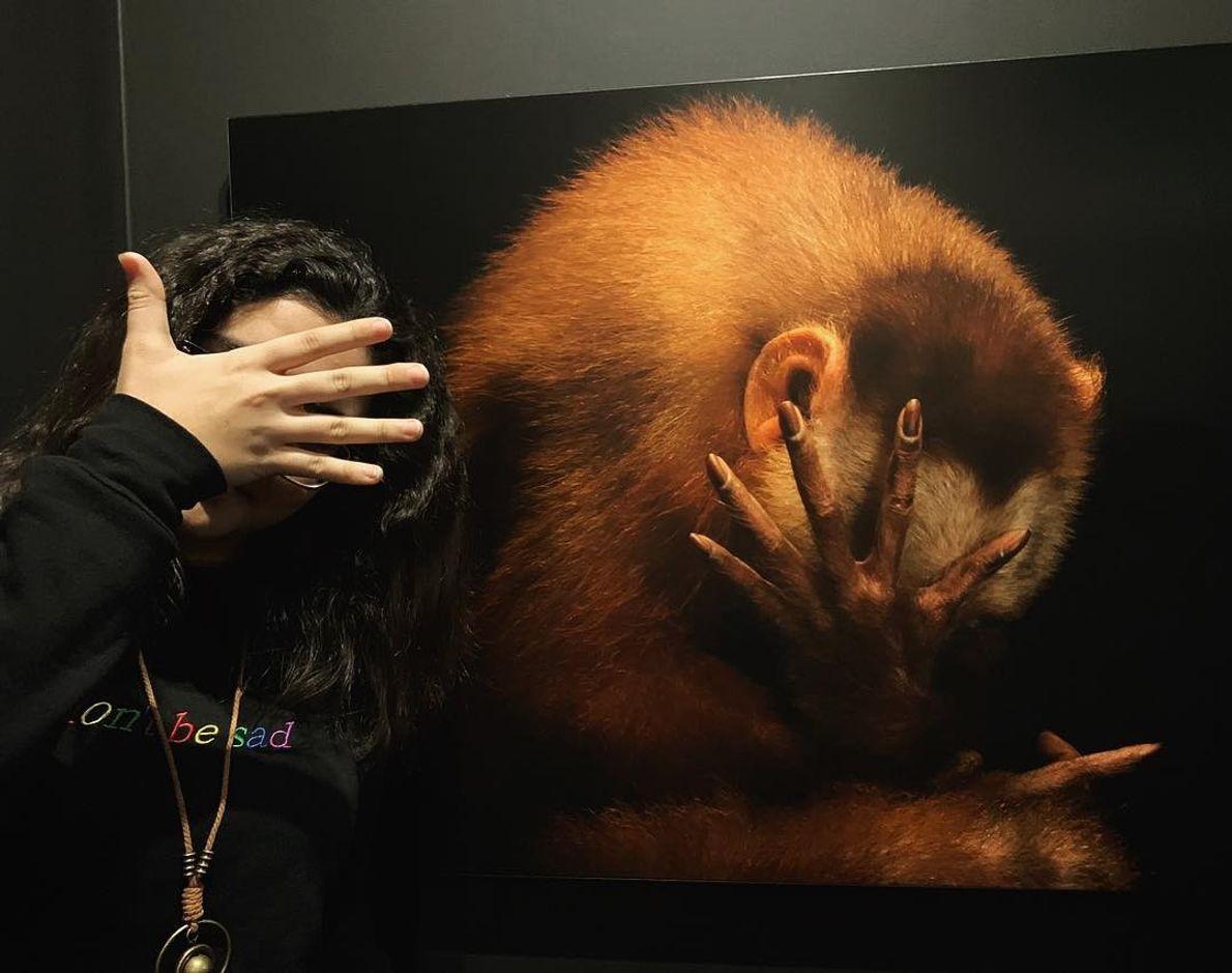 Imagem da participante @sadt.00 na exposição Photo Ark