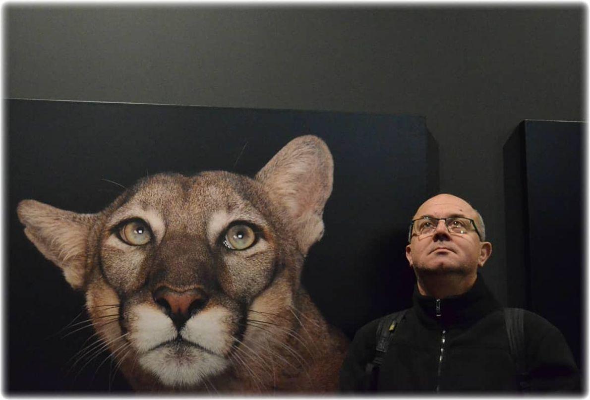 Imagem do participante @francisco.ferreira.908132 na exposição Photo Ark