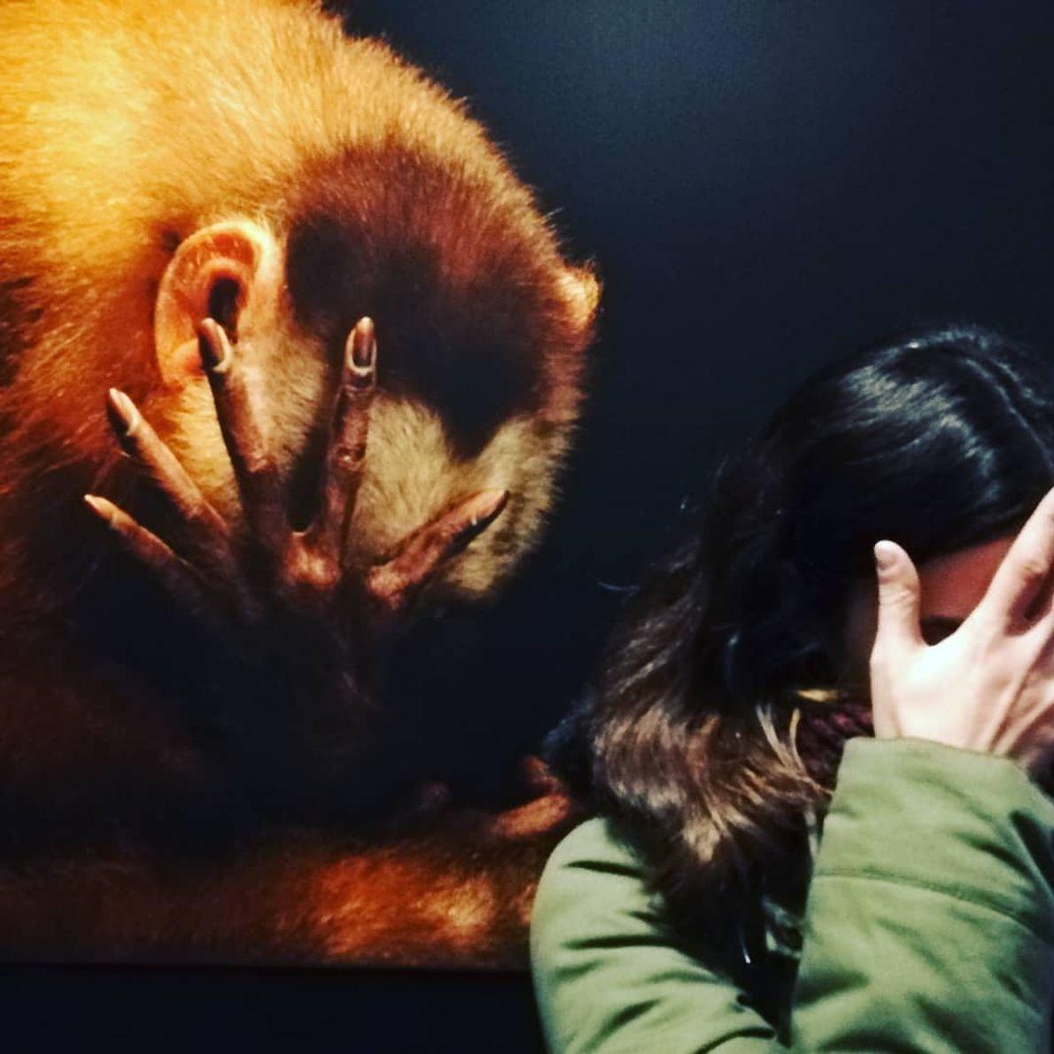 Imagem da participante @joanaag.marques na exposição Photo Ark